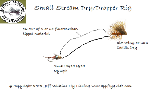 small stream dry and dropper nymph rig